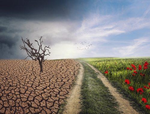 Konsekvenser af klimaforandringerne